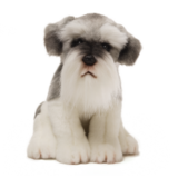 Dog Soft Toys and Gifts