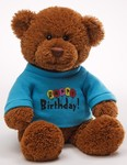 Birthday Teddy Bears and Toys